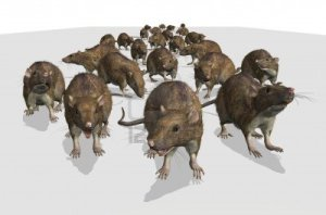 10543624-an-army-of-rats-is-approaching--i-hope-the-cat-is-ready-3d-render-with-digital-painting[1]
