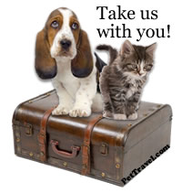 basset-on-suitcase-200x211[1]