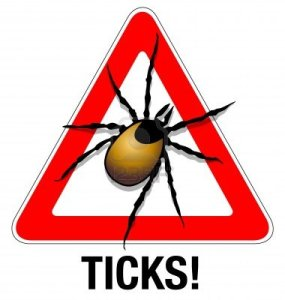 13061076-tick-warning-illustration-of-a-tick-warning-sign[1]